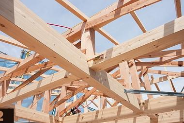 Madera en construcción. Módulo 2: introducción a la normativa de la madera en construcción