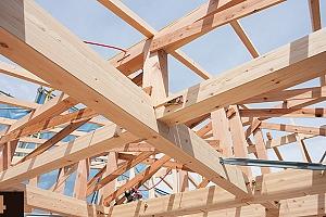 Madera en construcción. Módulo 4: tratamientos de protección y mantenimiento de la madera