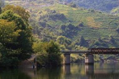 Concurso de ideas reordenación frente fluvial del Río Miño a su paso por la ciudad de Tui
