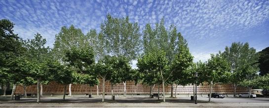 Rehabilitación de Picadero Cubierto . Madrid . Madrid . España