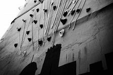 La palmera deconstruida_en clave ilicitana // Elx con idea 2014 . Elche . Alacant . España . 2014