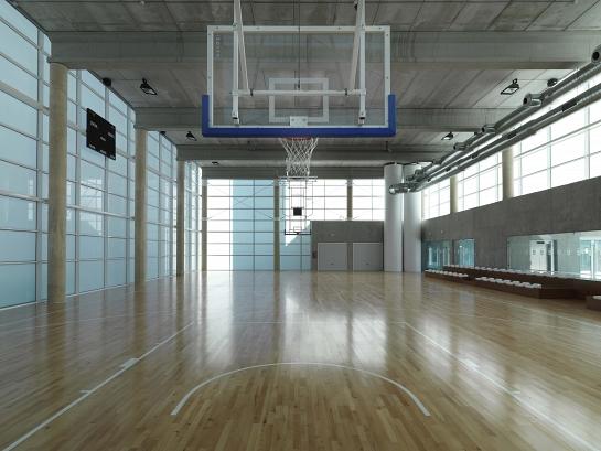 Pabellón de Deportes para el Ayuntamiento de Alcobendas . Madrid . Madrid . España