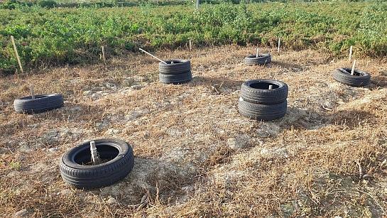 Bioconstrucción de Caseta de aperos y gestión de agua . Orihuela . Alacant . España