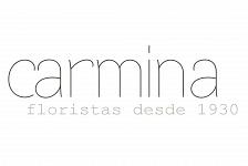 Imagen gráfica Floristería Carmina . Torrevieja . Alacant . España