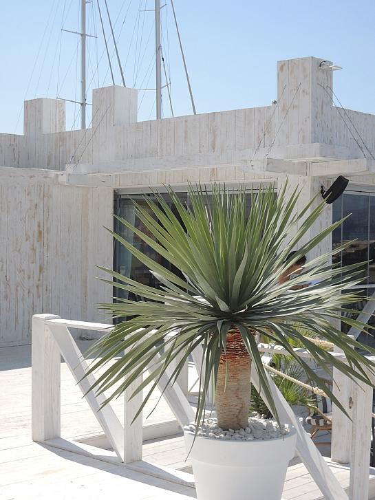 BAY CLUB ALTEA . Altea la Vieja . Alacant . España